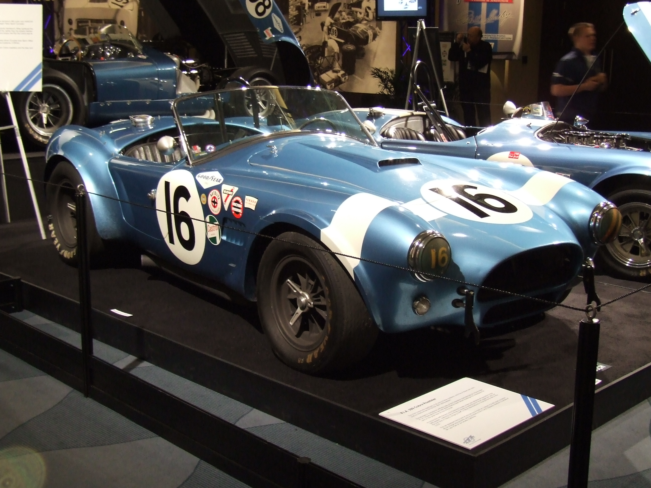 Ac cobra photo - 1
