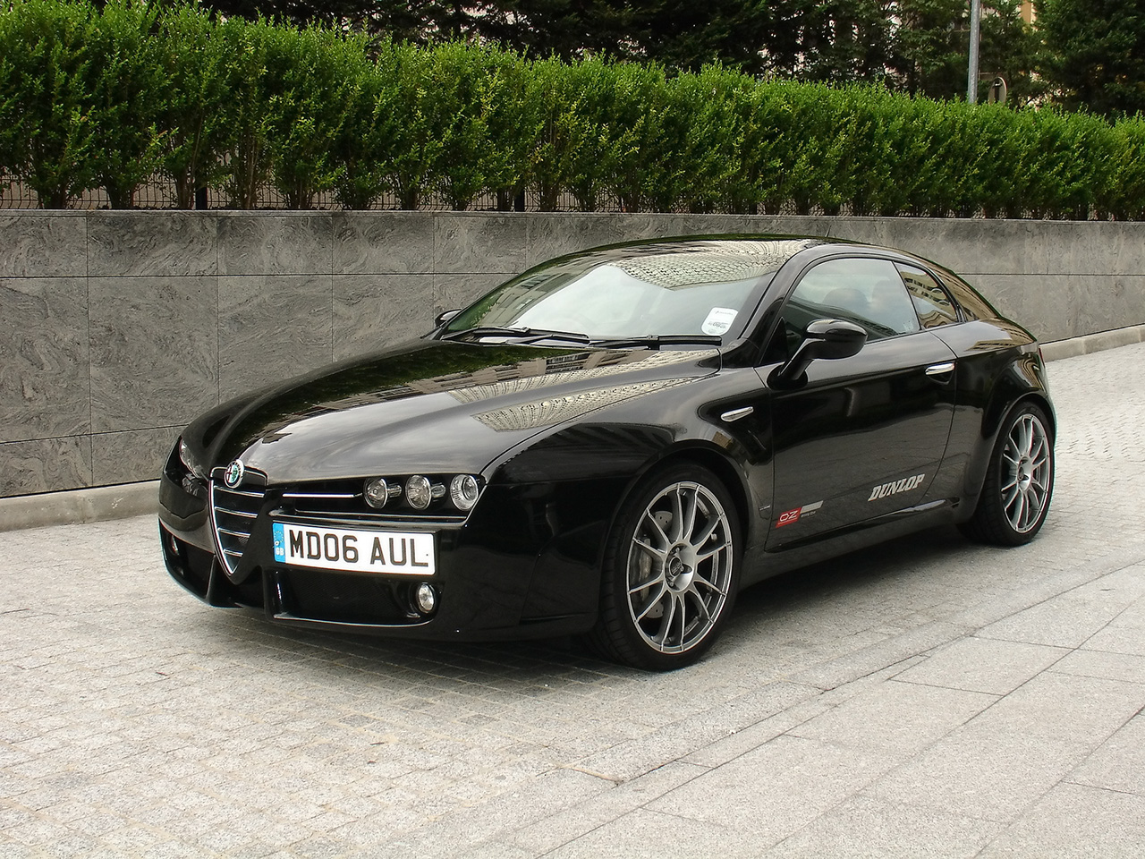 Alfa romeo 8 photo - 1