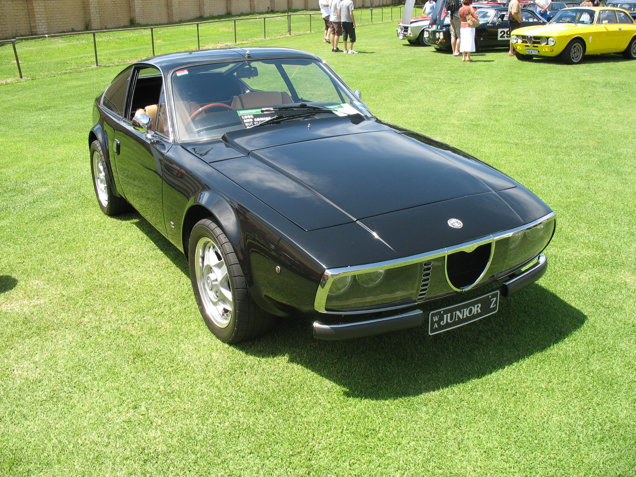 Alfa romeo junior photo - 3