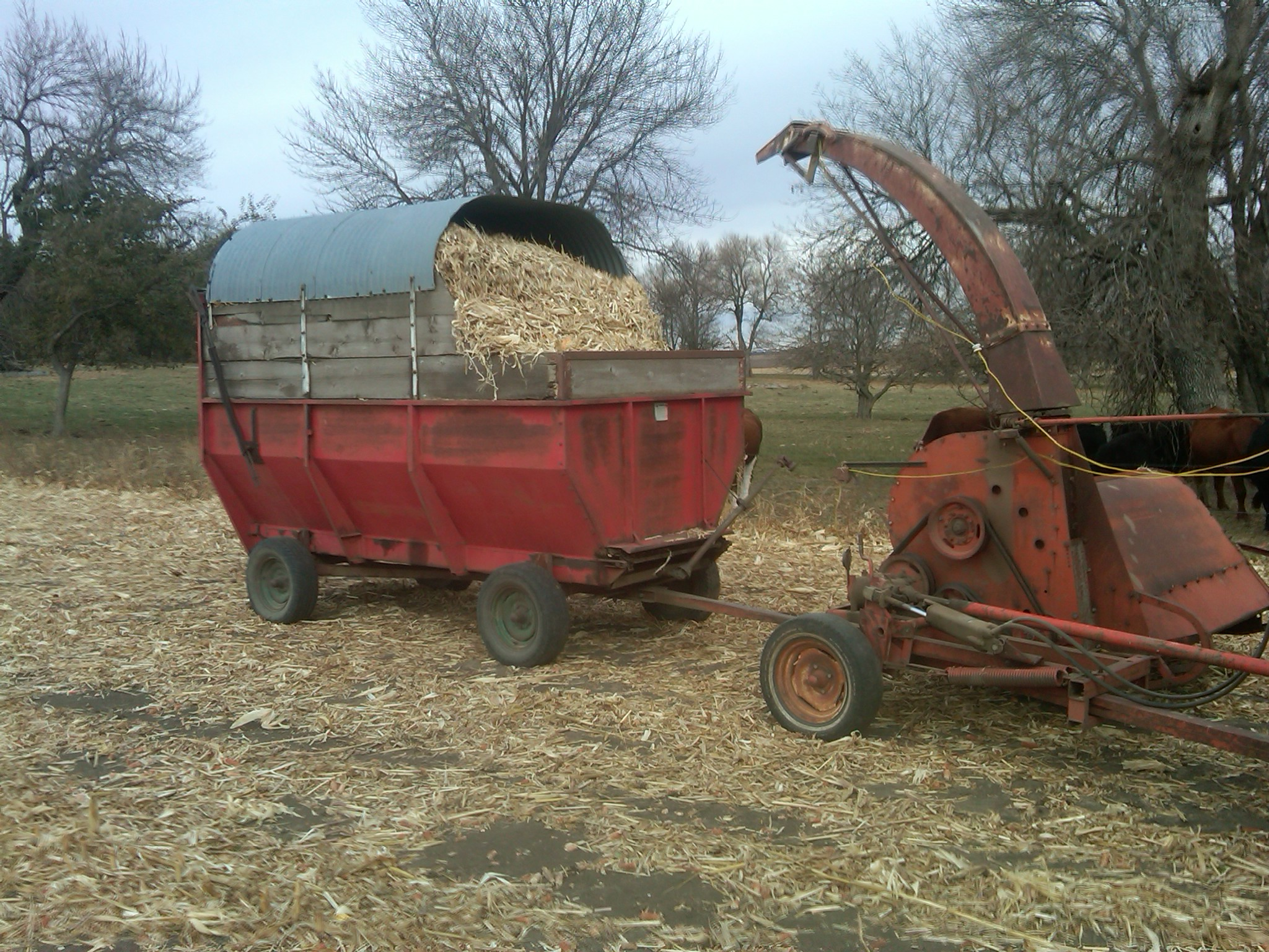 Allis-chalmers harvester photo - 3