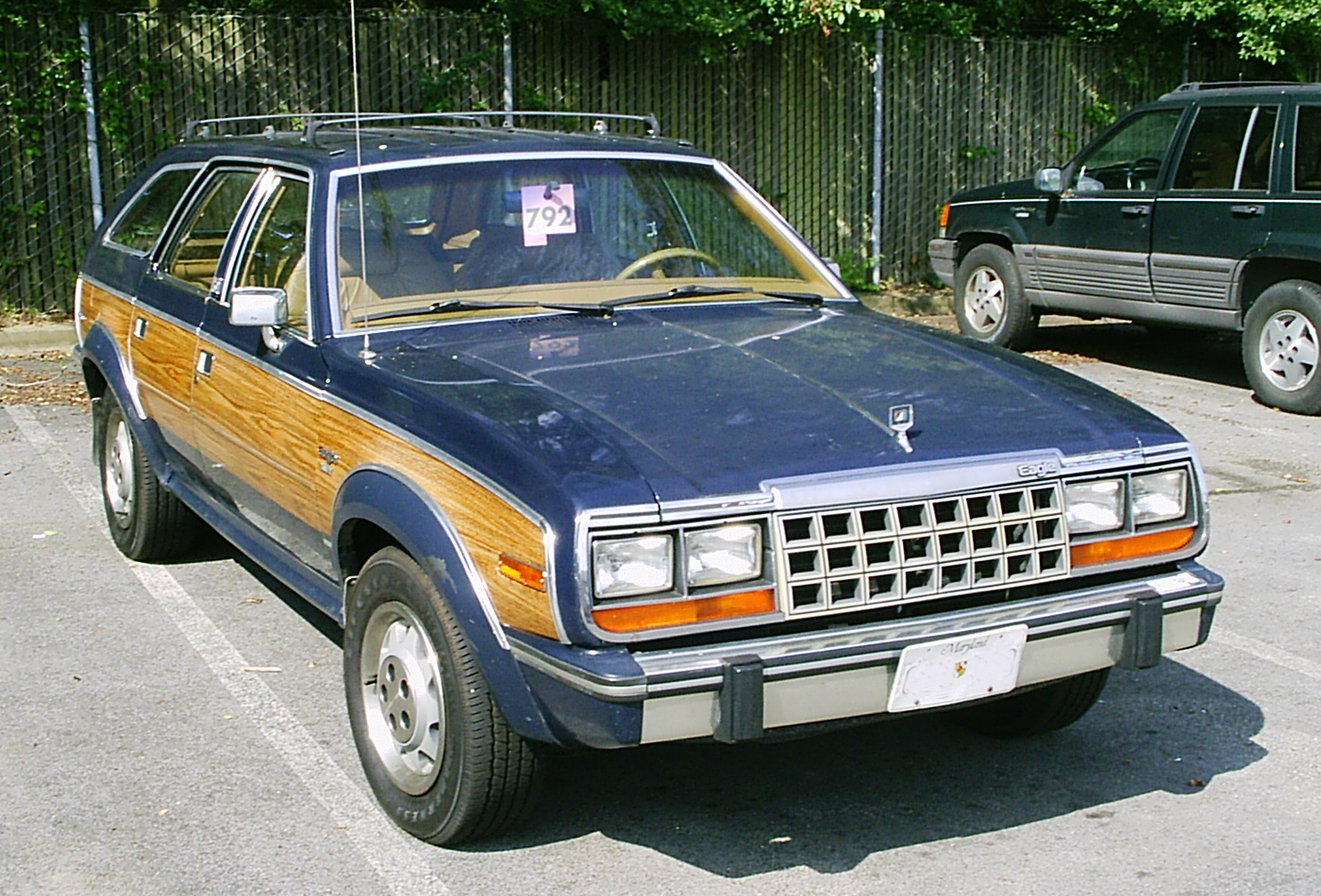 Amc eagle photo - 4