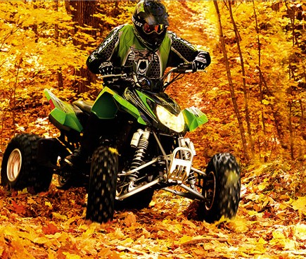 Arctic cat trv photo - 2