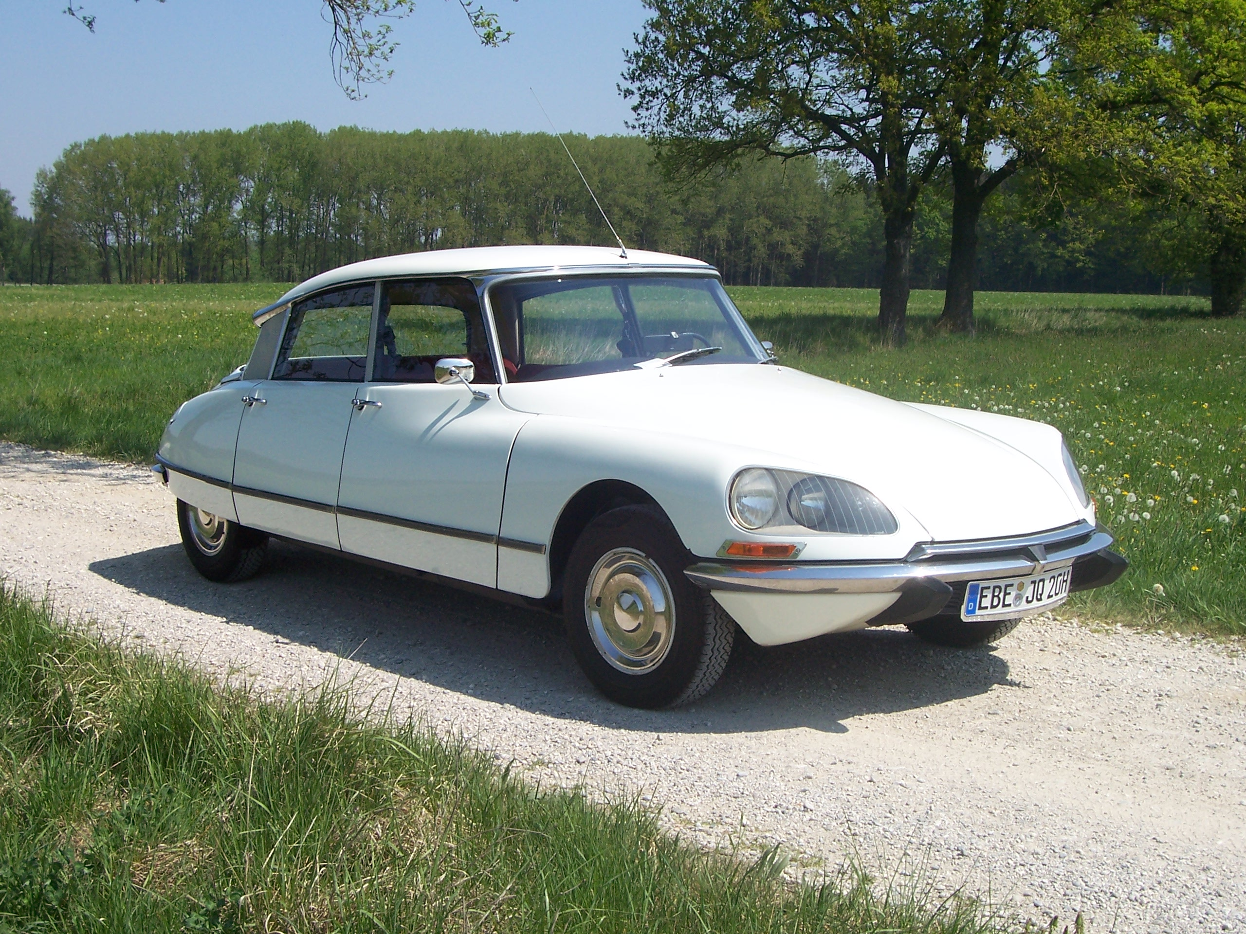 Citroen diana photo - 1