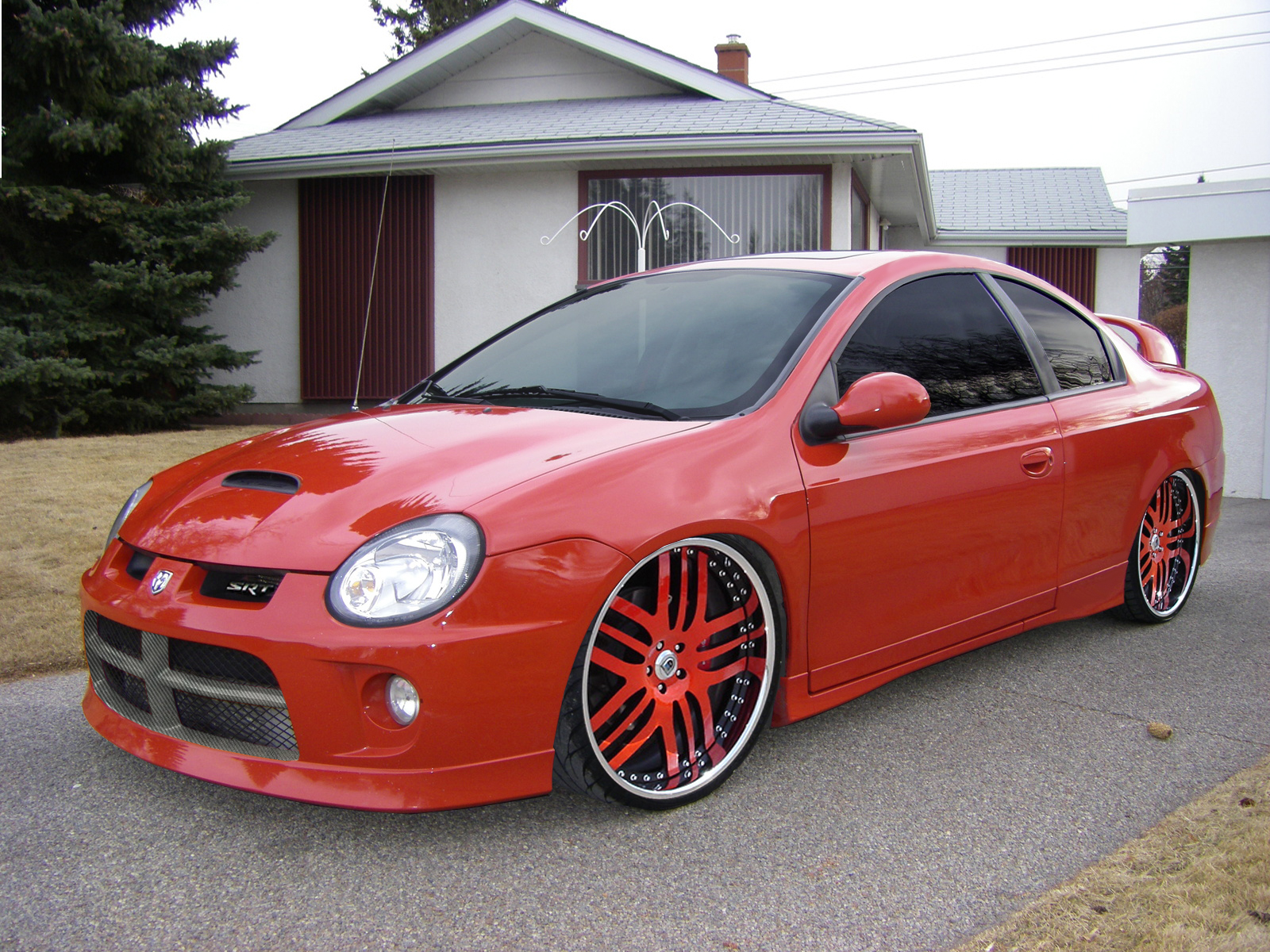 Dodge srt4 photo - 1
