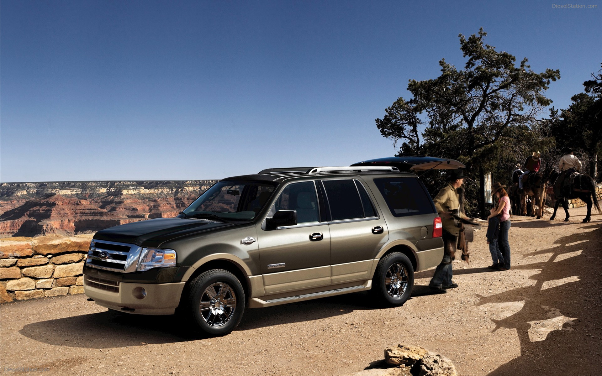 Ford expedition photo - 3