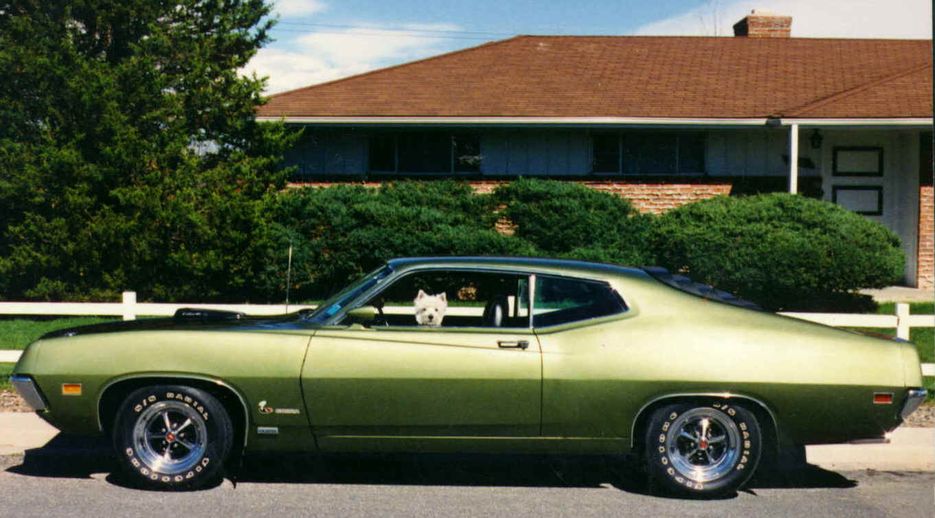 Ford torino photo - 2