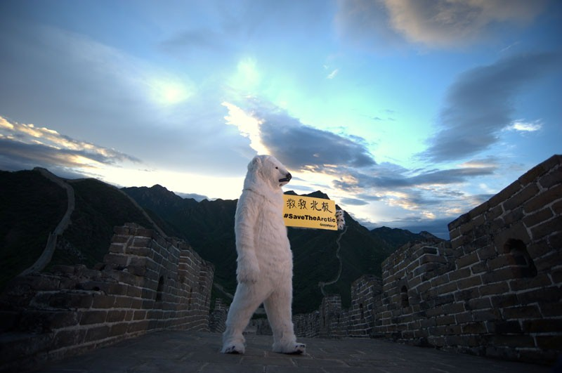 Great wall bear photo - 2