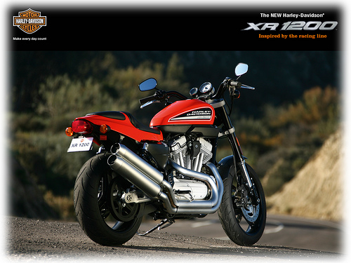 Harley-davidson 750 photo - 4