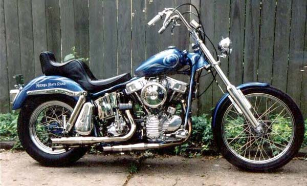 Harley-davidson custom photo - 3
