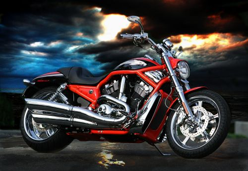 Harley-davidson screaming photo - 3