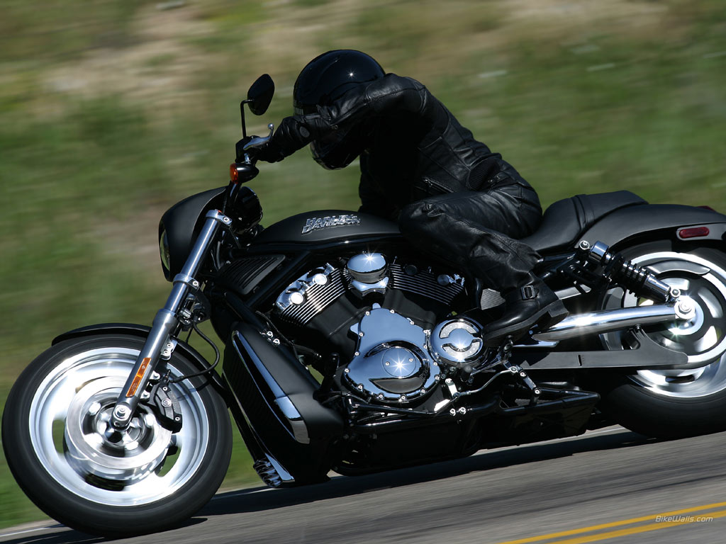 Harley-davidson vrsc photo - 3