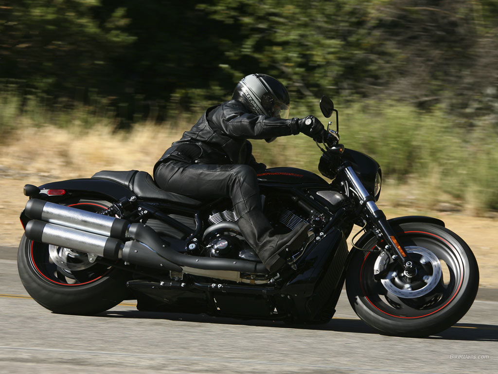 Harley-davidson vrscdx photo - 2