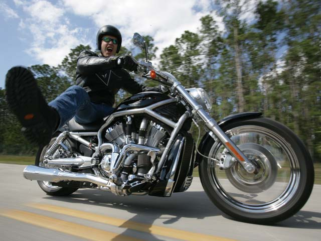 Harley-davidson vrscdx photo - 4