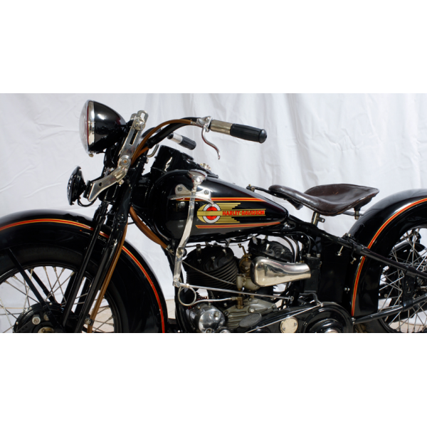 Harley-davidson wld photo - 3
