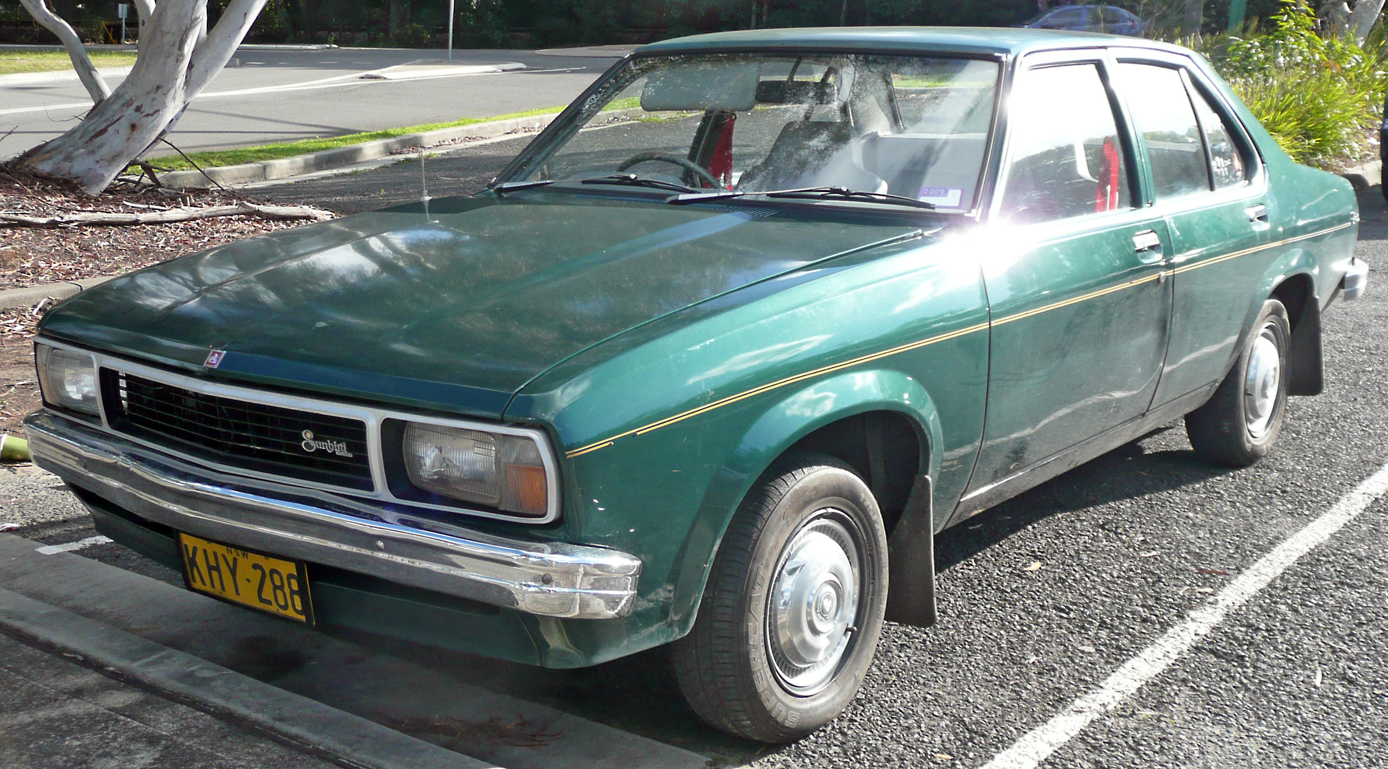 Holden sunbird photo - 4