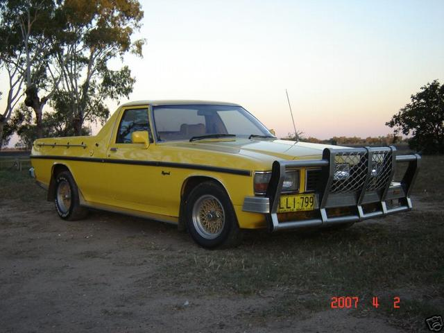 Holden ute photo - 2