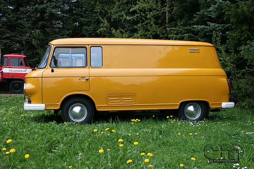 Ifa barkas photo - 3