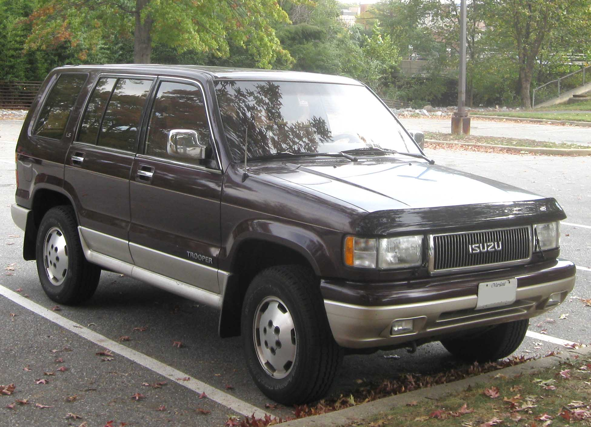 Isuzu 3.1 photo - 2
