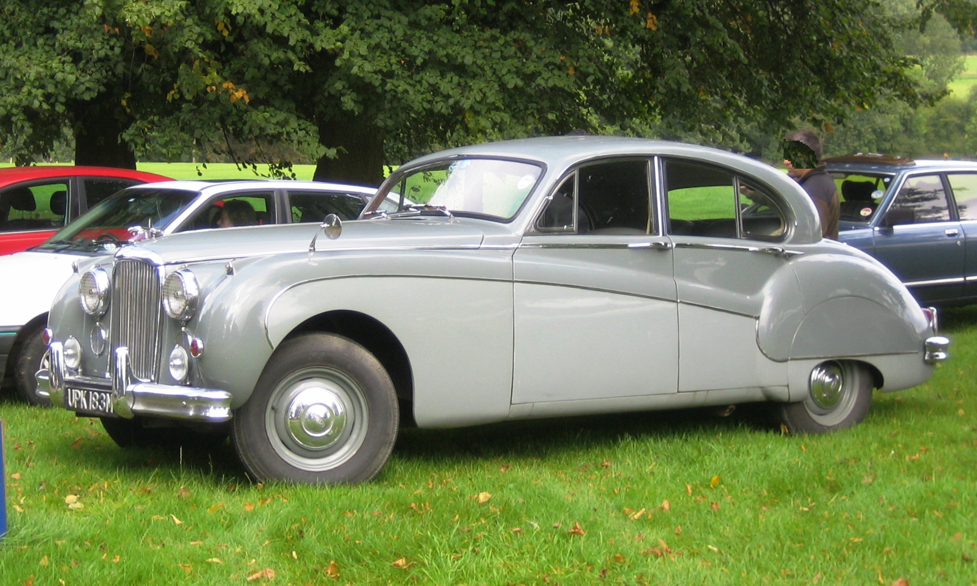 Jaguar mark photo - 2