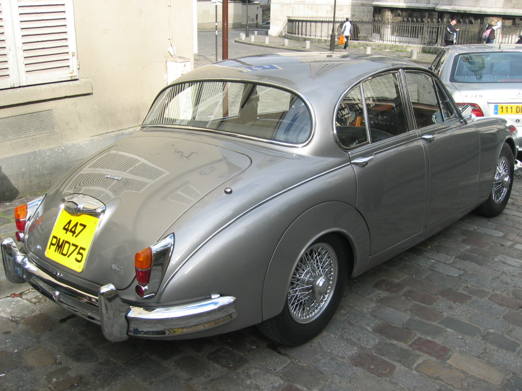 Jaguar mark photo - 3