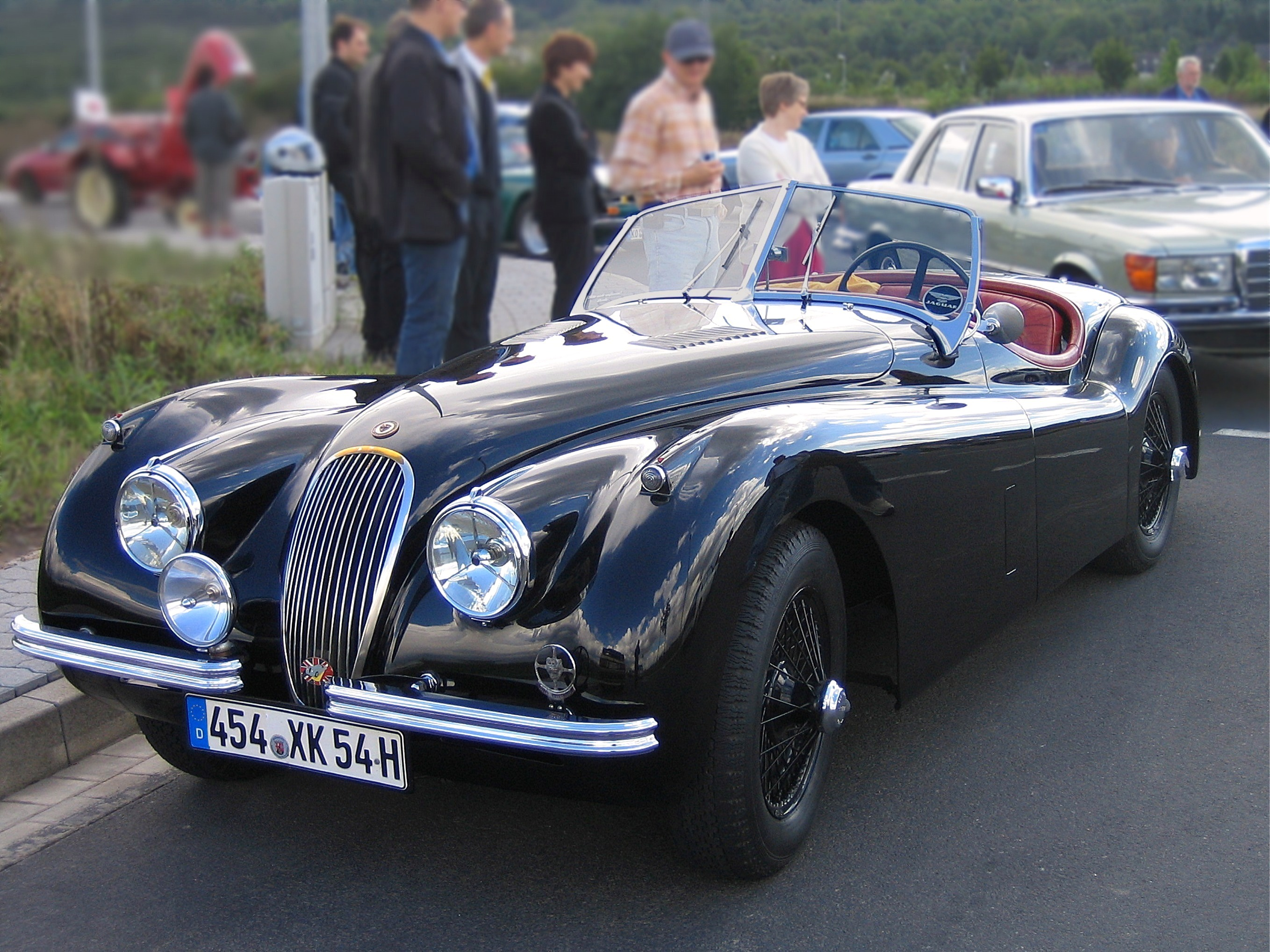 Jaguar s.s. photo - 4