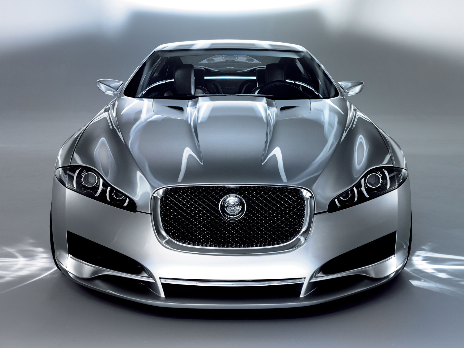 Jaguar sports photo - 2