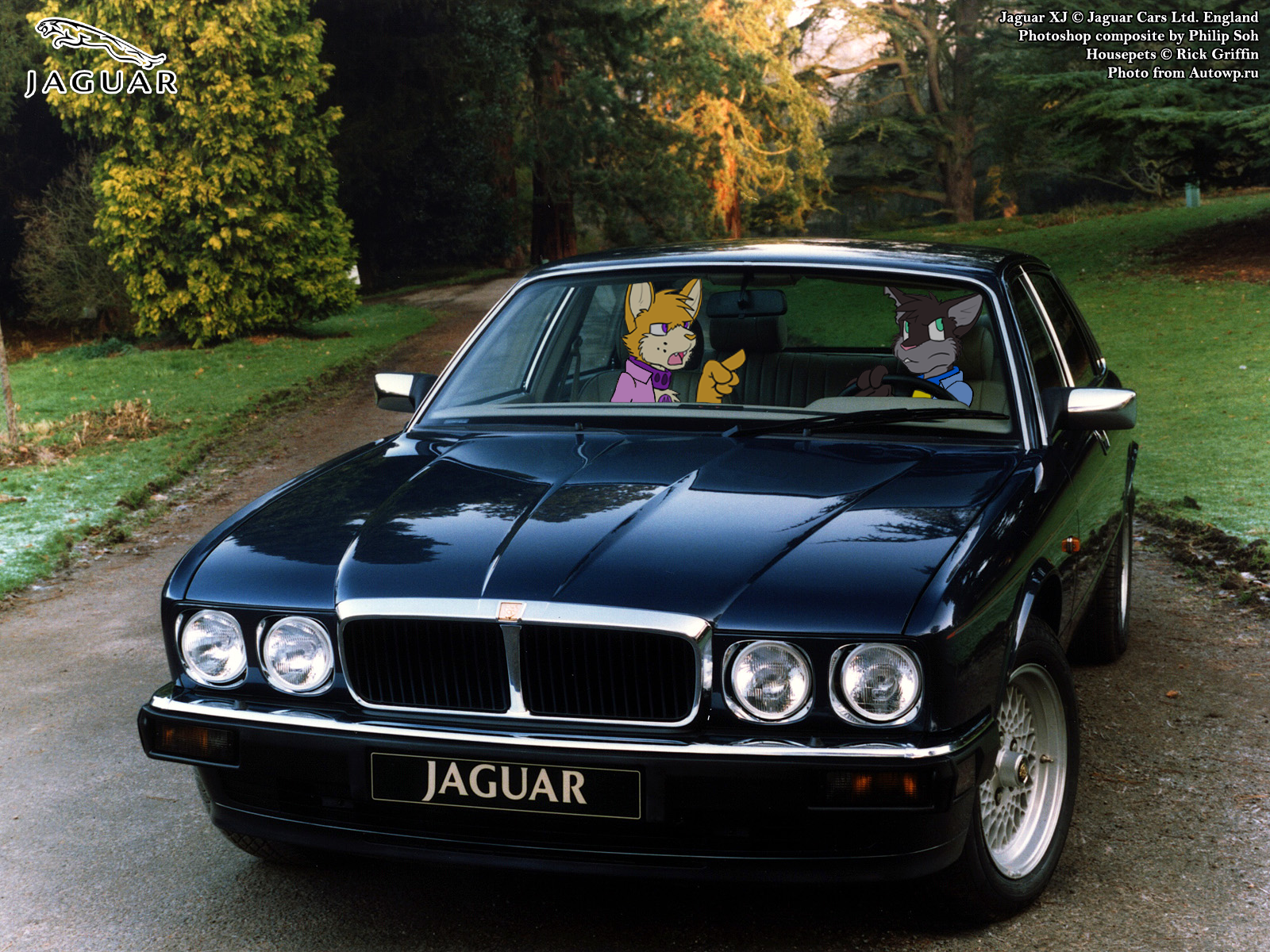 Jaguar xj40 photo - 2