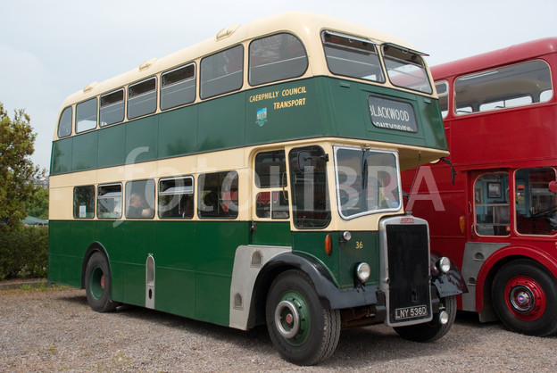 Leyland bus photo - 4