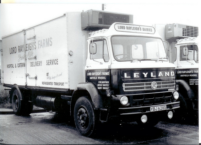 Leyland clydesdale photo - 2