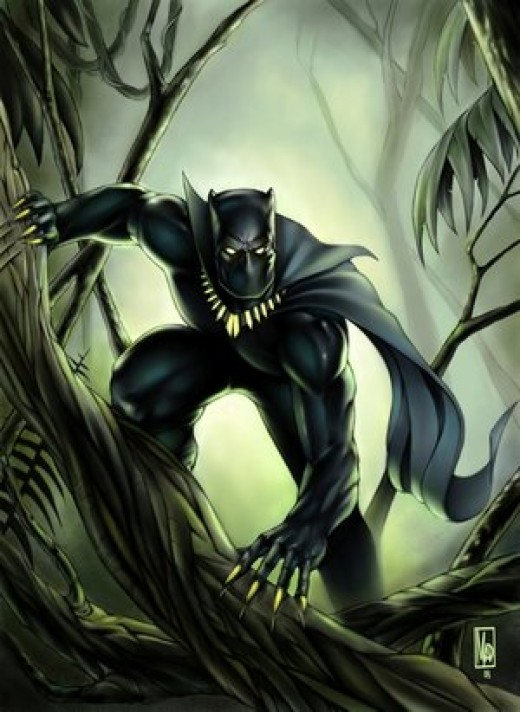 Man panther photo - 4