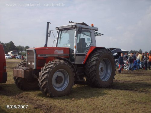 Massey ferguson 3000-series photo - 4