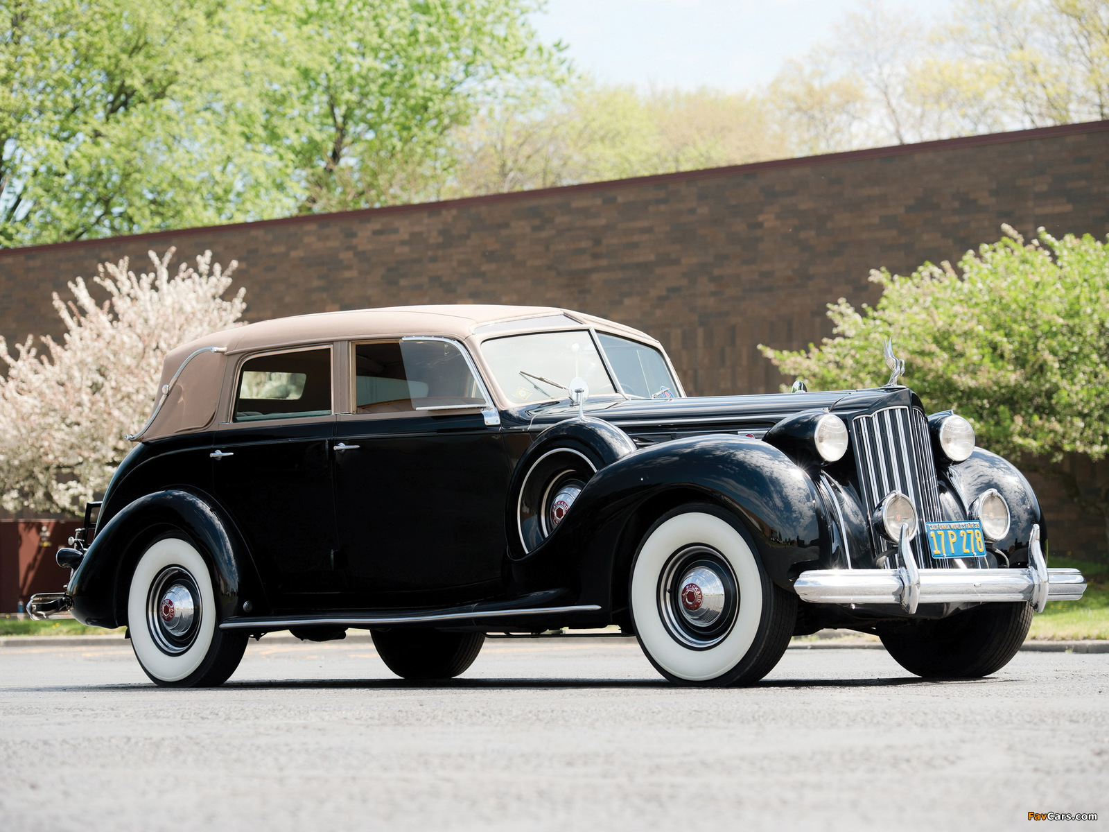 Packard cabriolet photo - 4