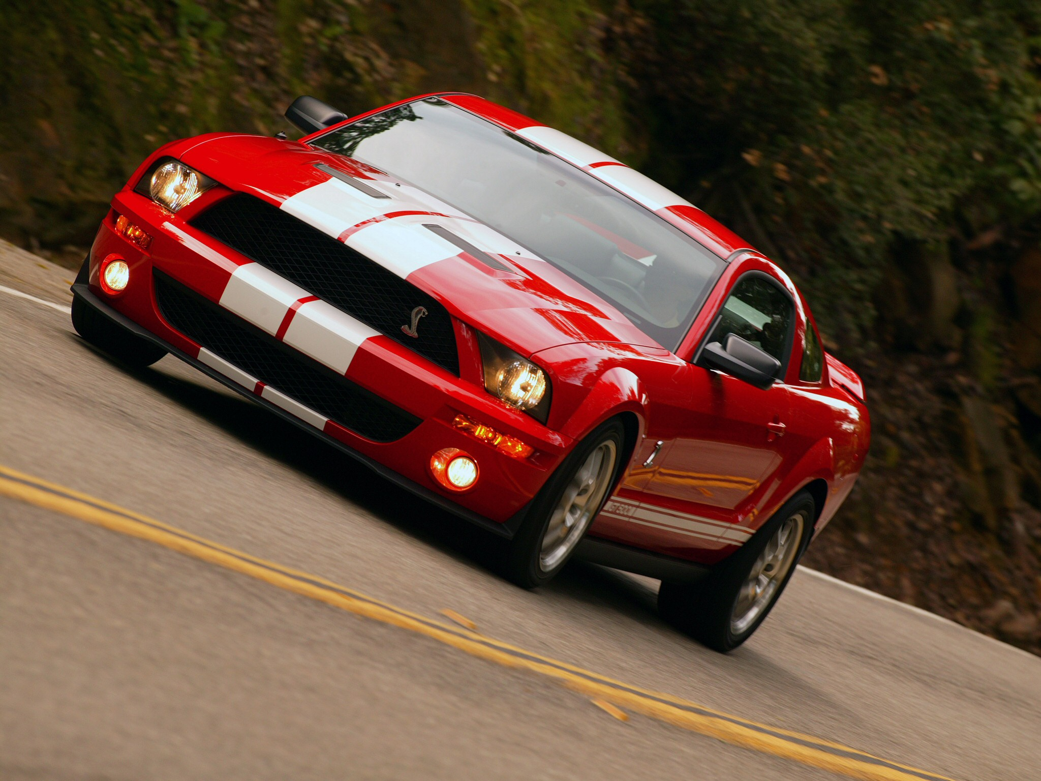 Shelby gt photo - 1