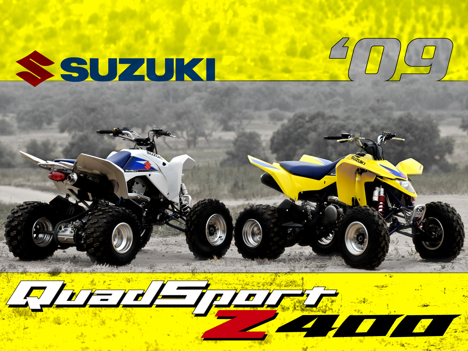 Suzuki quadsport photo - 2