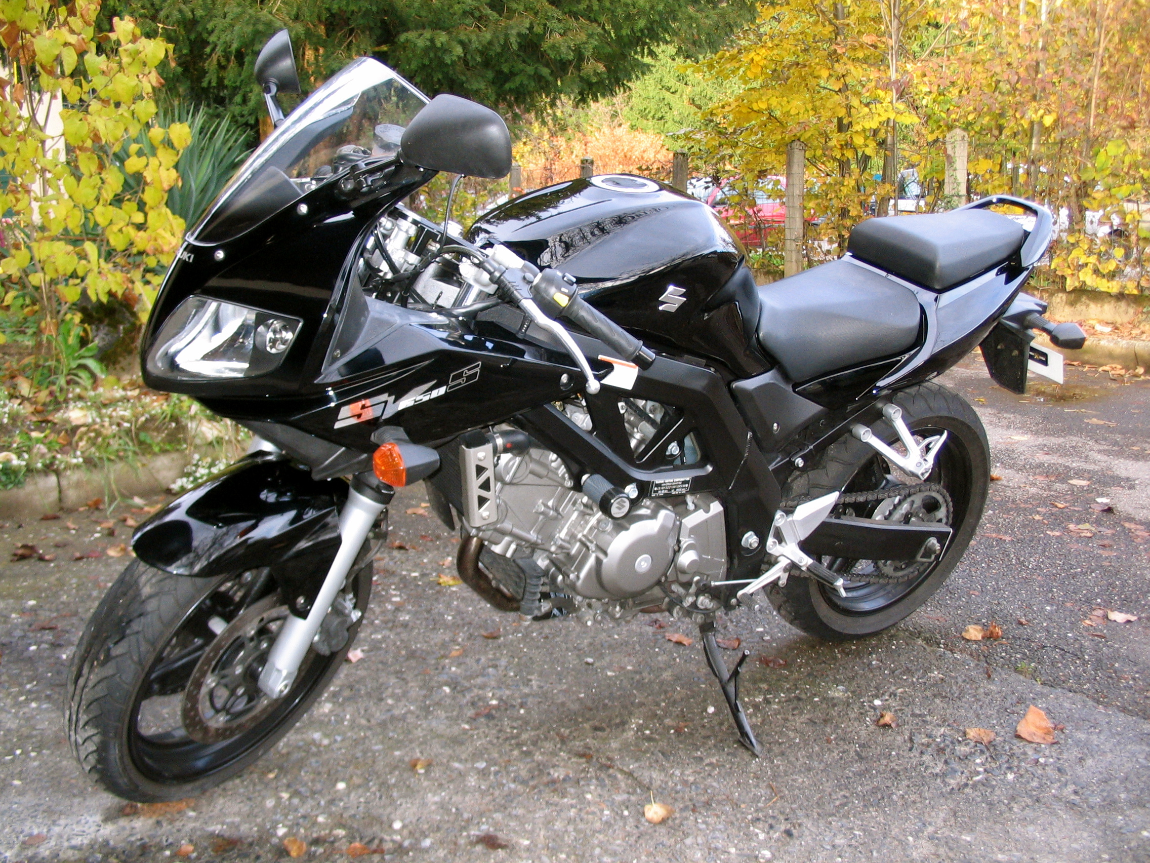 Suzuki sv650sf photo - 2