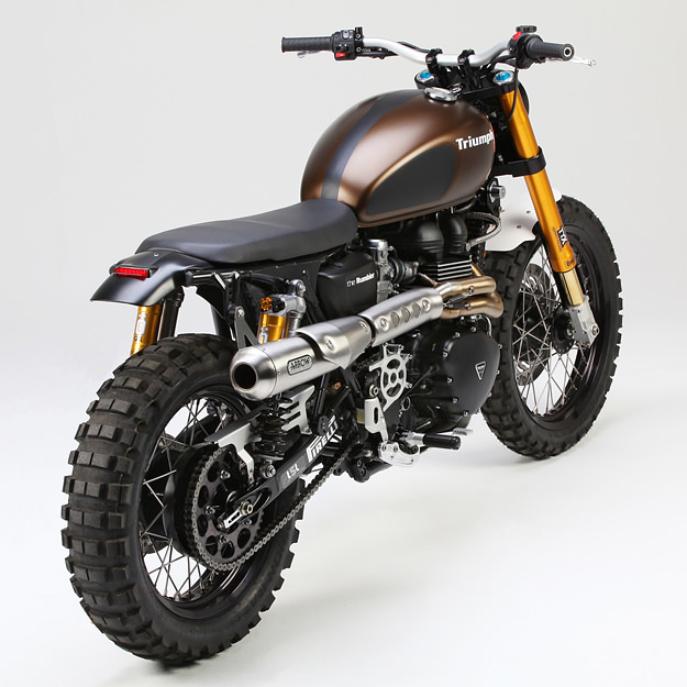 Triumph scrambler photo - 3