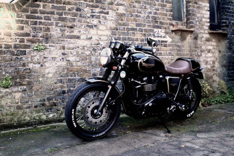 Triumph thruxton photo - 2