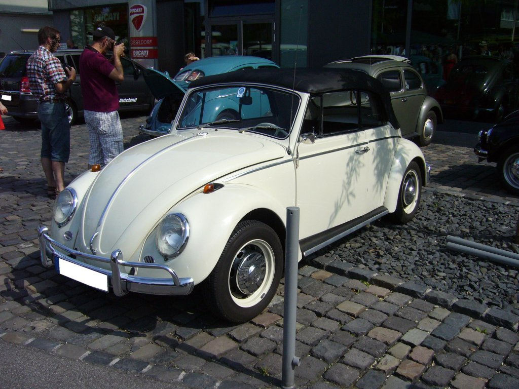 Volkswagen typ1 photo - 1