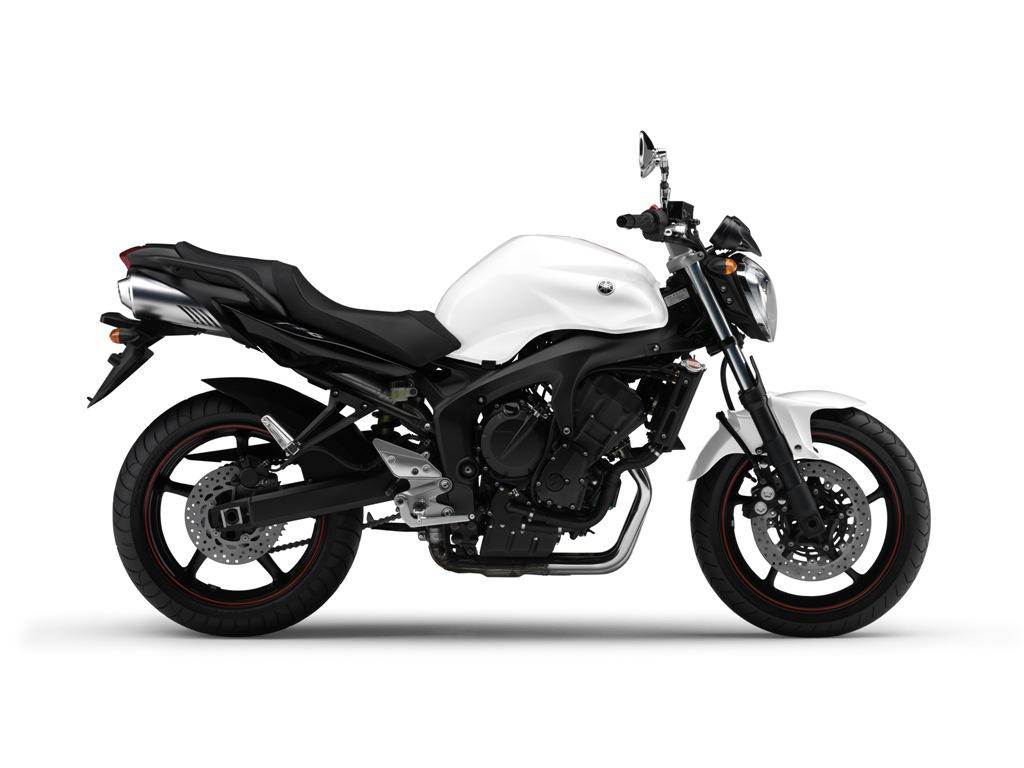Yamaha fz6 photo - 4