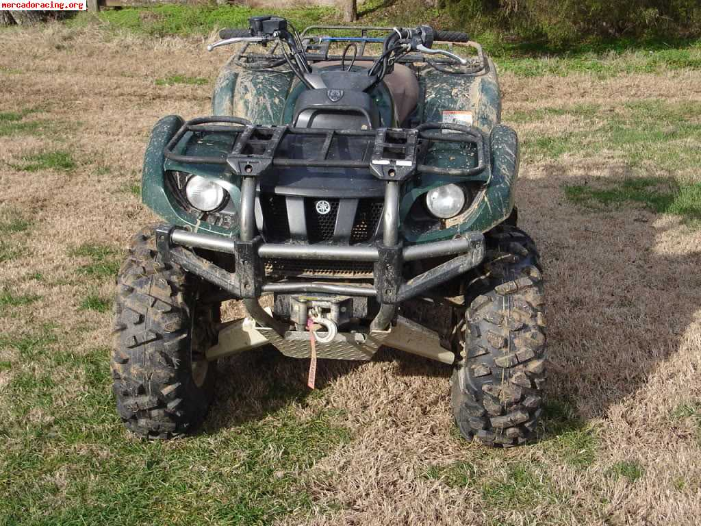 Yamaha grizzly photo - 4
