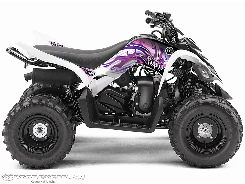 Yamaha raptor photo - 2