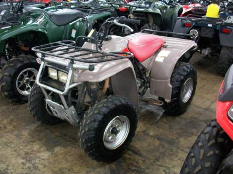 Yamaha timberwolf photo - 2